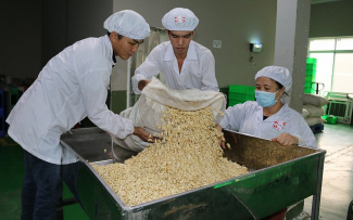 Cashew nut massively exports to China base on trade tensions USA-China